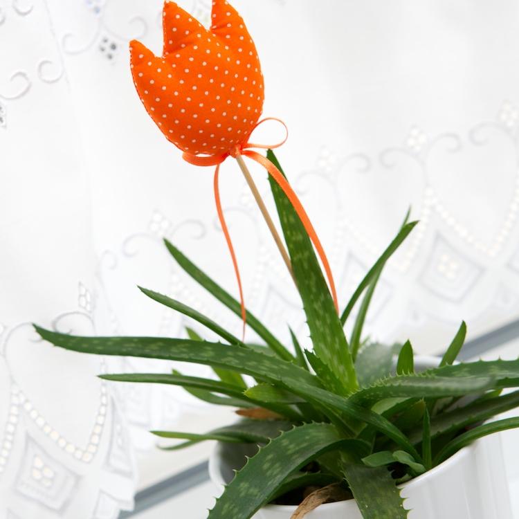 Interiér na jar - tulipán